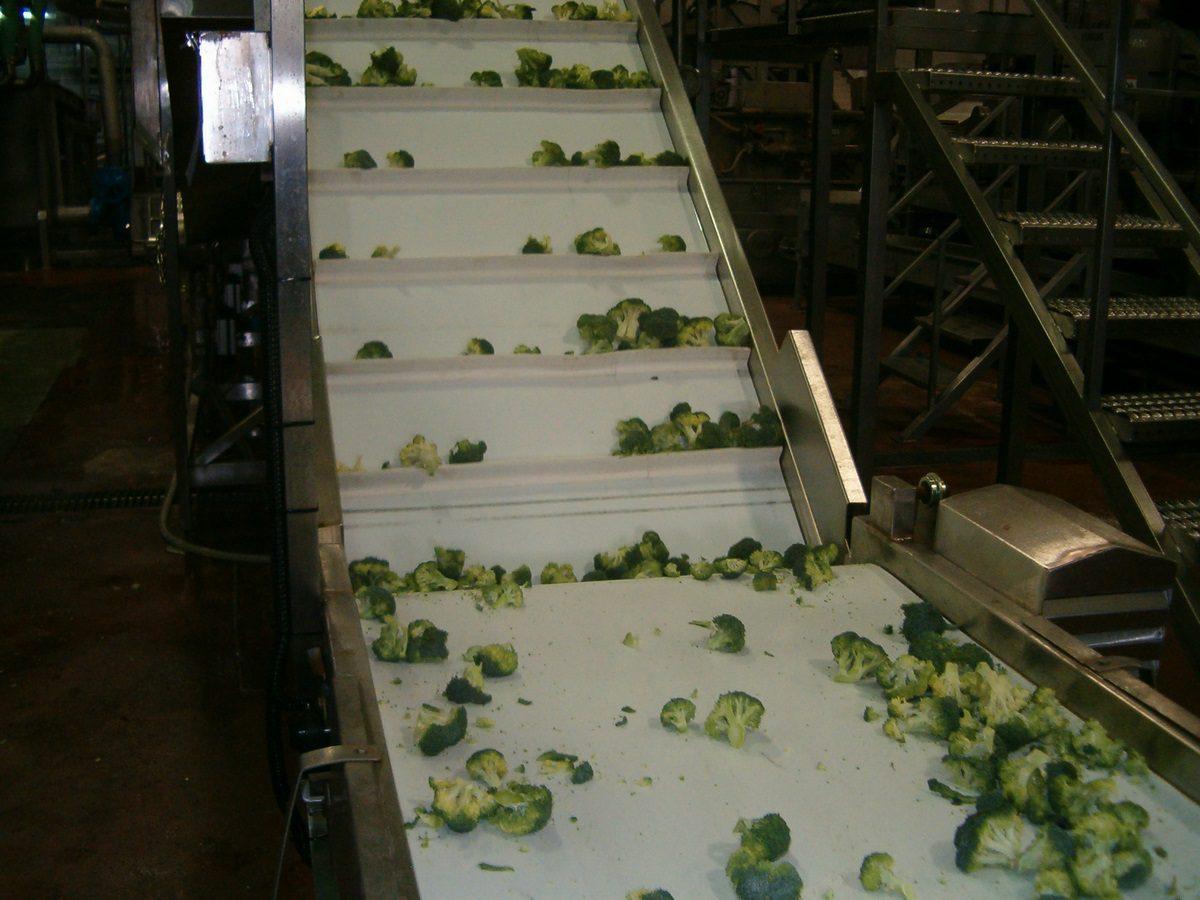 מסועים לחקלאות